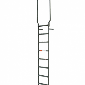 Steel Vertical Ladder With Rail Extensions