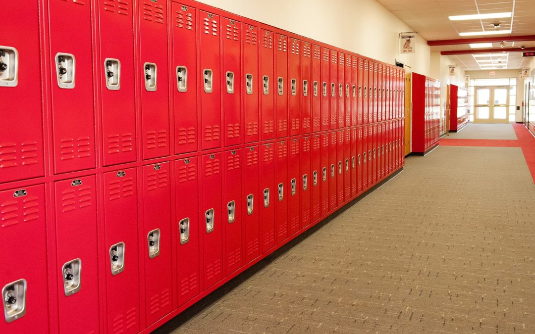 A Brief Guide To Buying Lockers For Schools And Offices